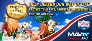 2018 CCHA SJH Livestock Spectacular & Horse Shows #4 & #5 @ International Agri-Center | Tulare | California | United States