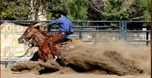 2018 CCHA Spring Spectacular & Horse Shows #4 & #5 @ International Agri-Center | Tulare | California | United States