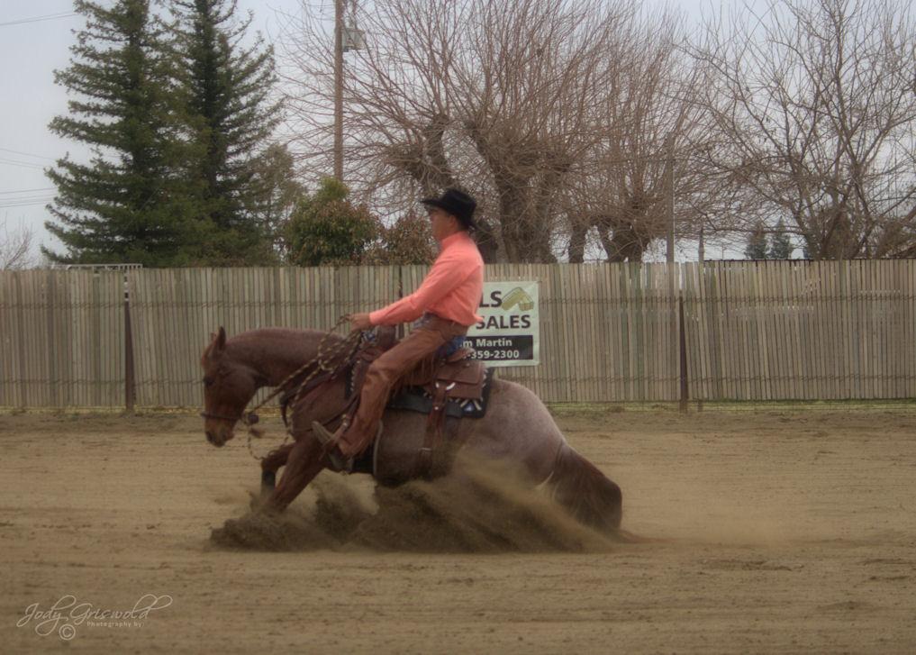 2018 CCHA Horse Show #2 Richard Winters OJH 1st